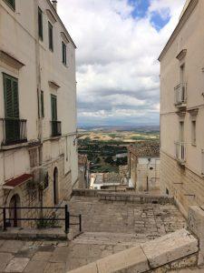 Minervino Panorama