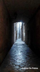 Vicolo centro storico Bisceglie BA